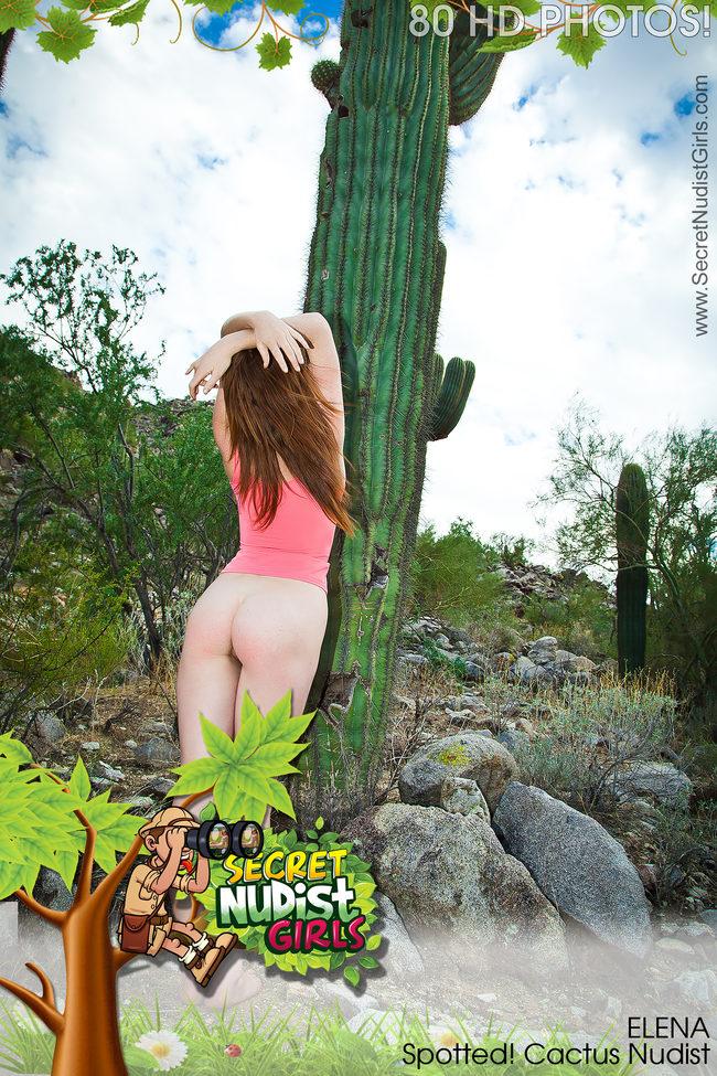Think, that Cactus voyeur pic are